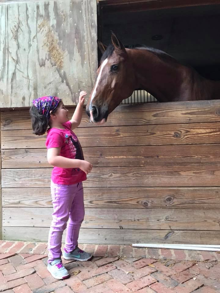 Little Aubree pets a pony in a stable